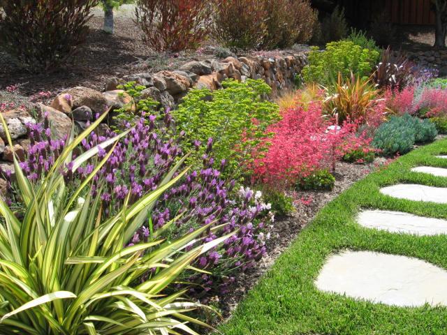Santa cruz drought tolerant landscape pgs landscape company - Drought tolerant plants landscape design ...