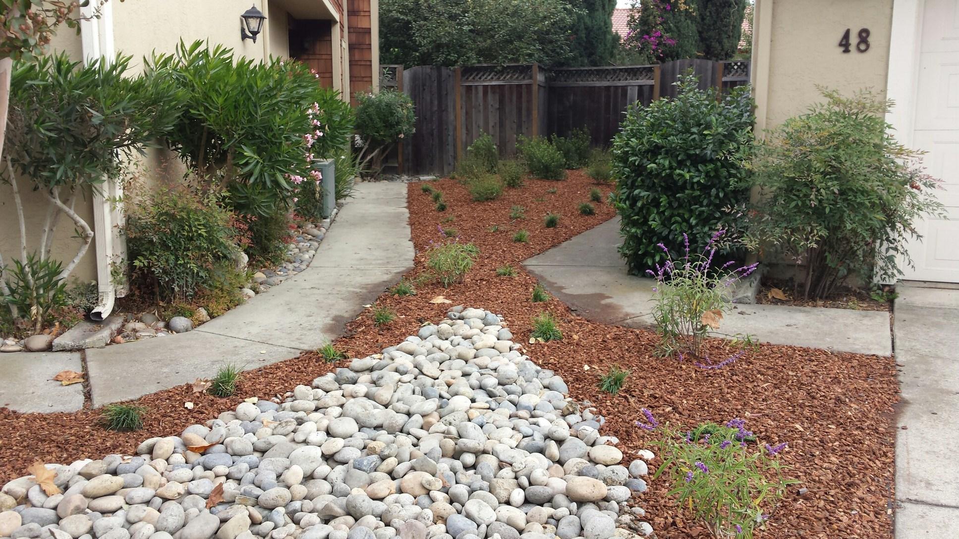 Santa Cruz Drought Tolerant Landscape